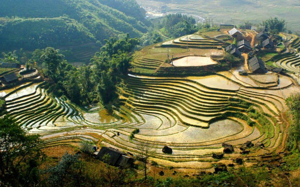Оформление Вьетнамской визы